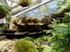 Giardino delle essenze tropicali