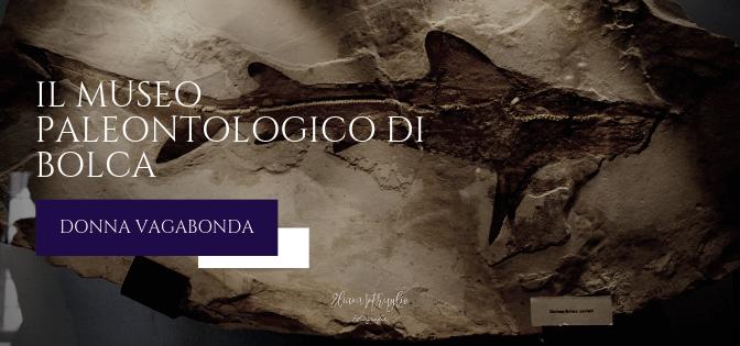 Il Museo di febbraio: il museo paleontologico di Bolca