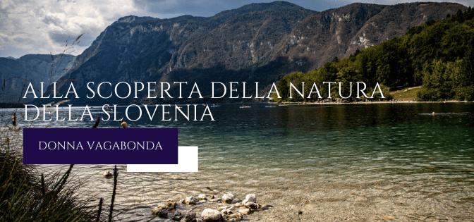 Alla scoperta della natura della Slovenia: il Lago di Bohinj