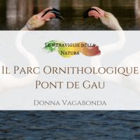 Il Parc Ornithologique Pont de Gau