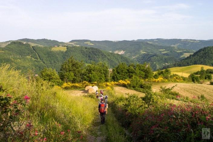 Foto da festivalitaca.net
