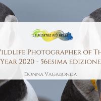 Wildlife Photographer of The Year 2021: 56esima edizione a Milano