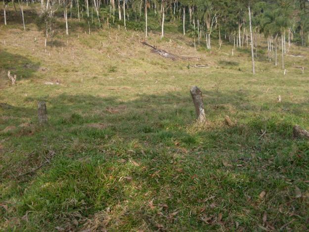 terrenos em joinville comprar Terrenos em Joinville – Comprar