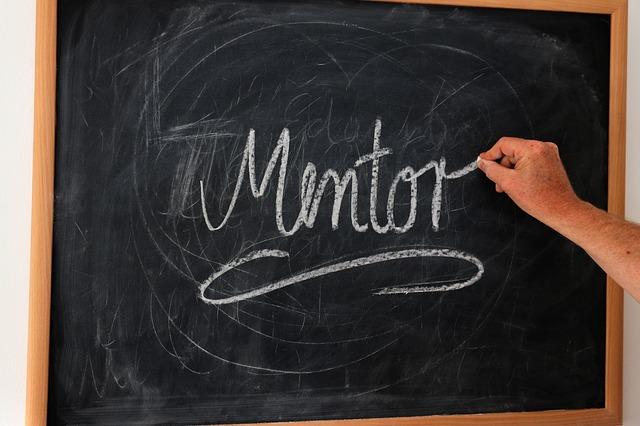 should salespeople use mentors