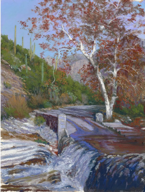 Sabino Canyon Tree by Western pastel landscape artist Don Rantz