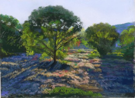 Watson Woods Late Afternoon by Western pastel landscape artist Don Rantz