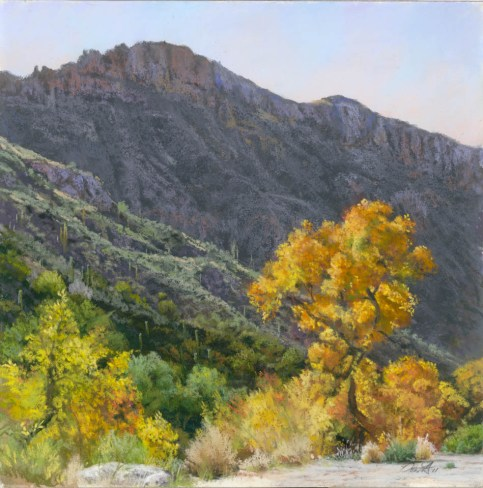 Sabino Canyon Square by Western pastel landscape artist Don Rantz