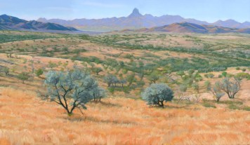 Sonoran Savannah by Western pastel landscape artist Don Rantz