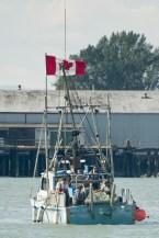 Fraser River fishers