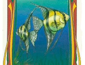 consulta tarot online o peixe
