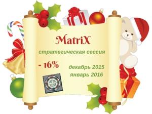 Стратегическая сессия на основе деловой игры MatriX