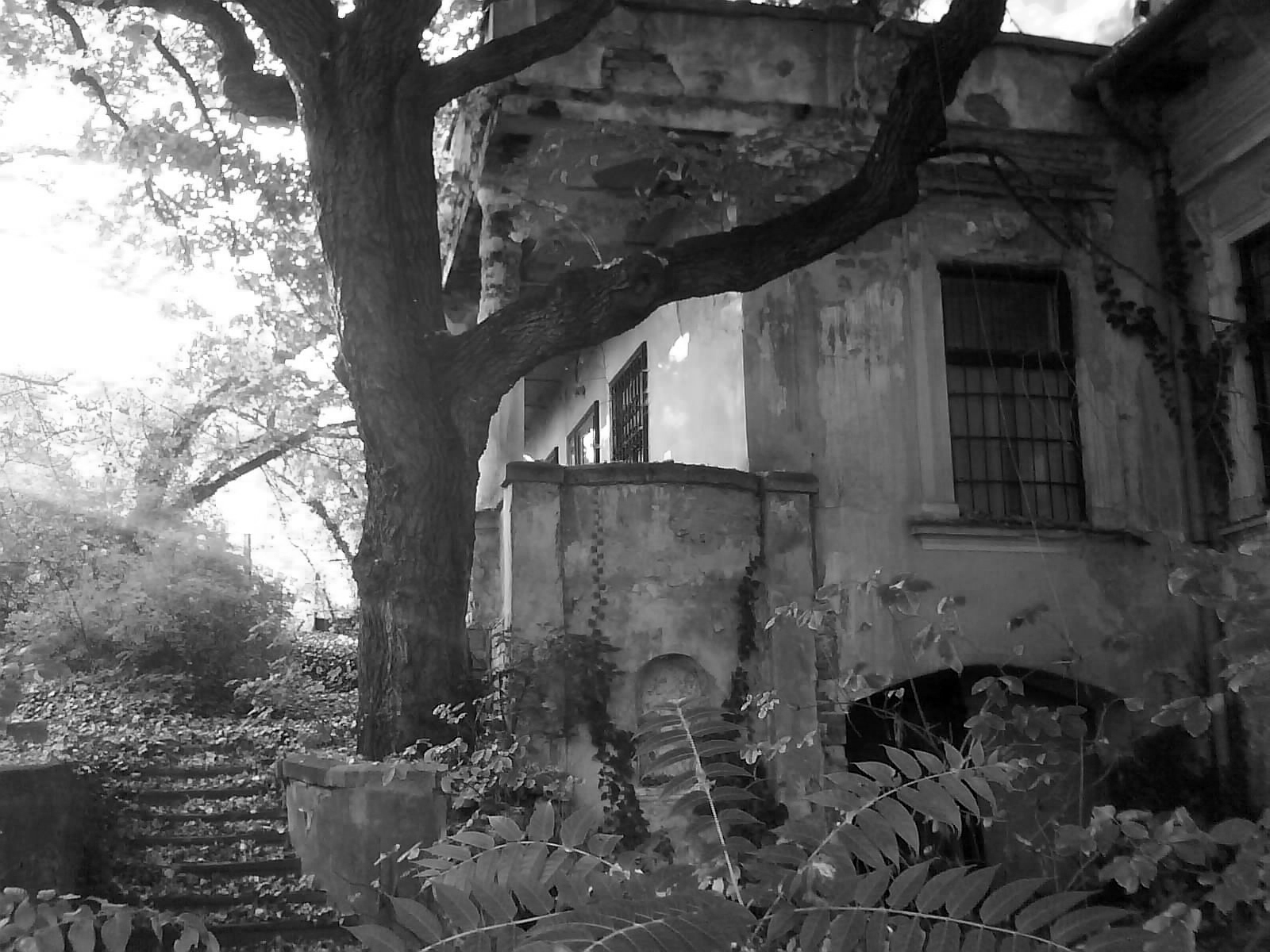 old-house-2-bw