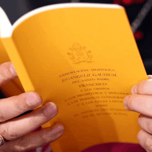 Gospel of Joy Pope Francis