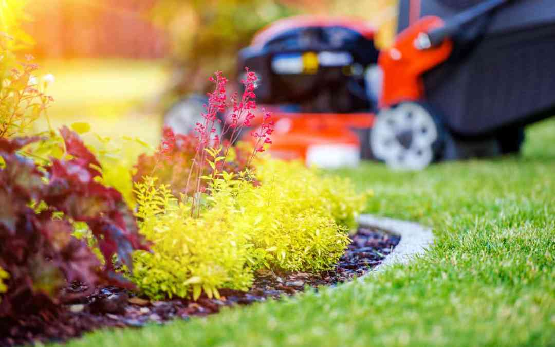 Dangerous Garden Traps You Need To Fix