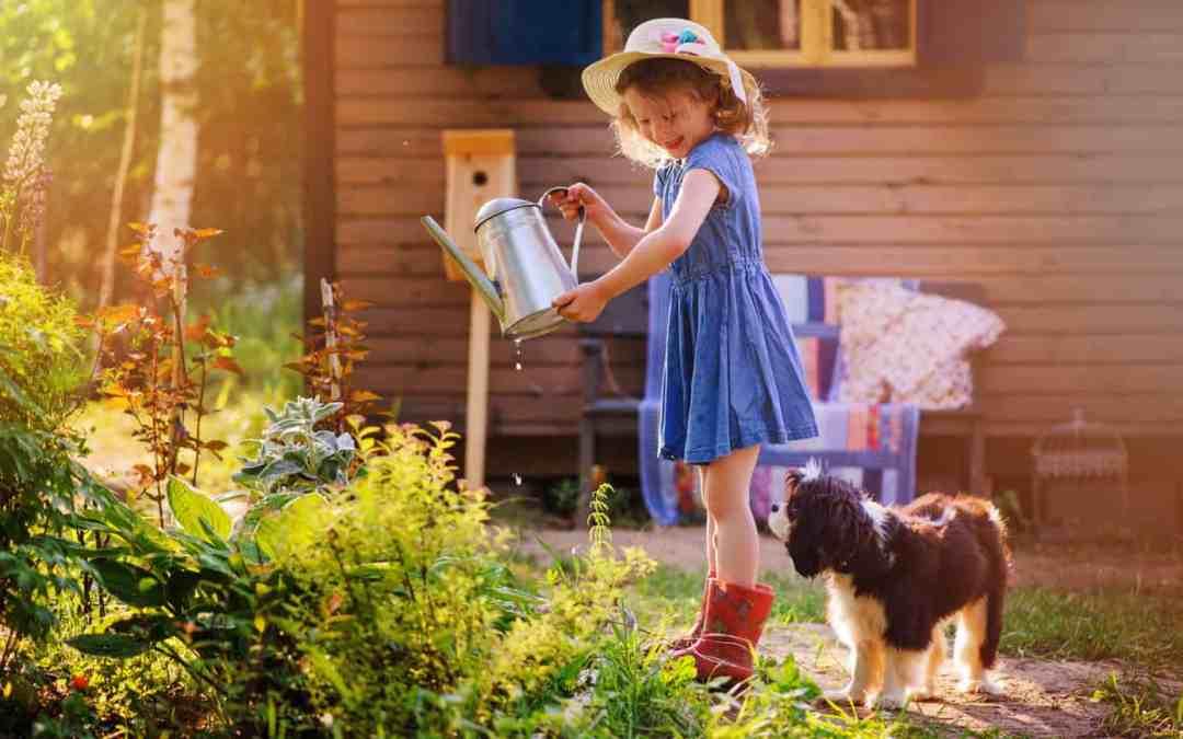 Create A Luxurious Backyard Retreat With 4 Gorgeous Ideas