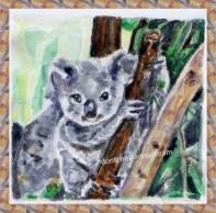 Koala Craze 1