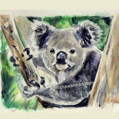 Koala Craze 2