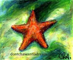 Happy.New.Year.Starfish