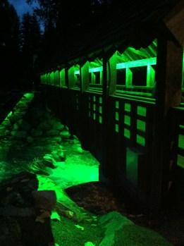 Illuminated Bridge in Whistler