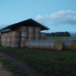 sleeping in a farmers barn in tasmania