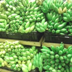 bananas in sri lanka dont buy in bulk