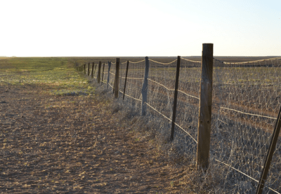 Dingo Fence in Australia.