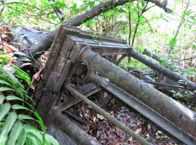 Ruins of the old mills in the jungle.