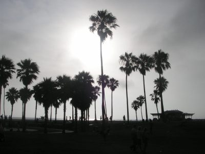 Sunset on Venice Beach