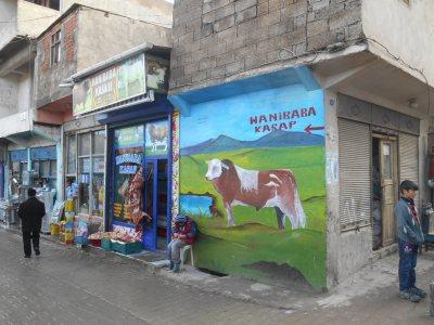 """A cow mural in unusual """"Doggy"""" (Dogubayazit, Turkey)"""