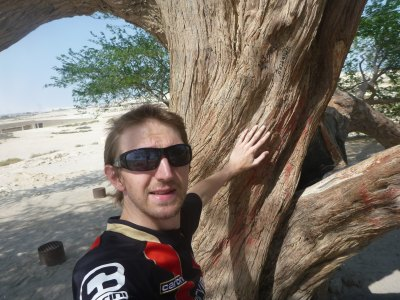 Touching the tree of life