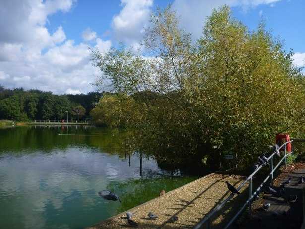 The Lagoan Isles, viewed from England.