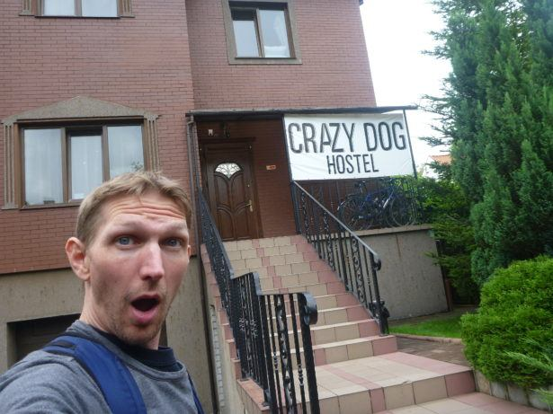 Oh the Crazy Dog!