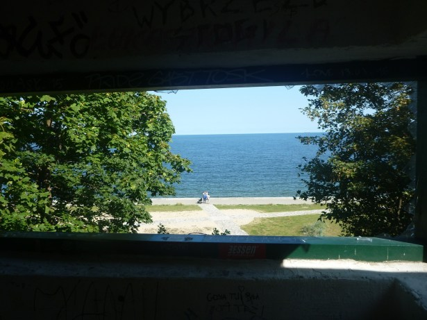 View from the Lookout Tower