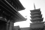 Japan Shrine..