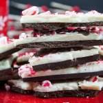 dark chocolate peppermint bark recipe easy Christmas candy treat dessert