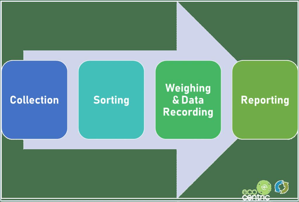 Don't Waste Ecocentric Waste Audit Procedure