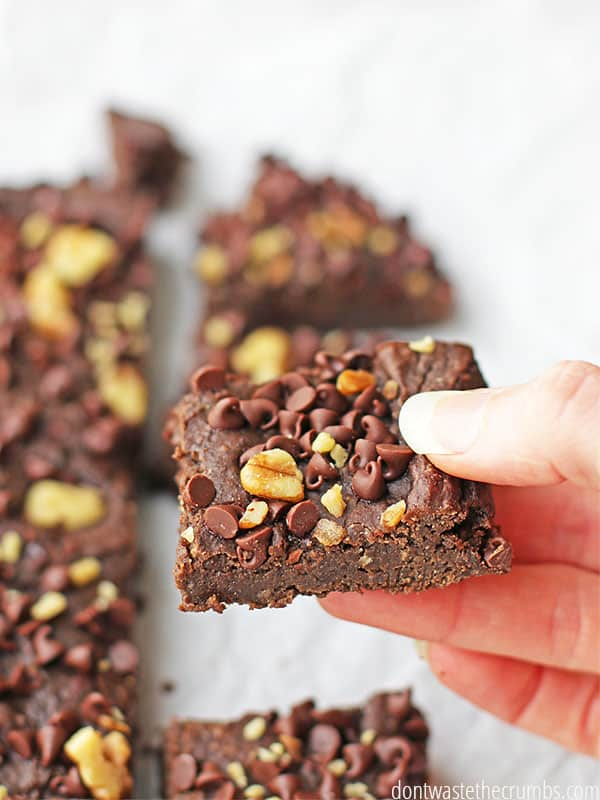 Oh my goodness, these black bean brownies taste just like those Little Debbie snacck fudge brownies I had when I was a kid! I love that these have no sugar, are packed with nutrition and passed the taste test of SEVEN people who couldn't even guess they had beans. My kids are hooked - these black bean brownies are the healthiest dessert ever! :: DontWastetheCrumbs.com