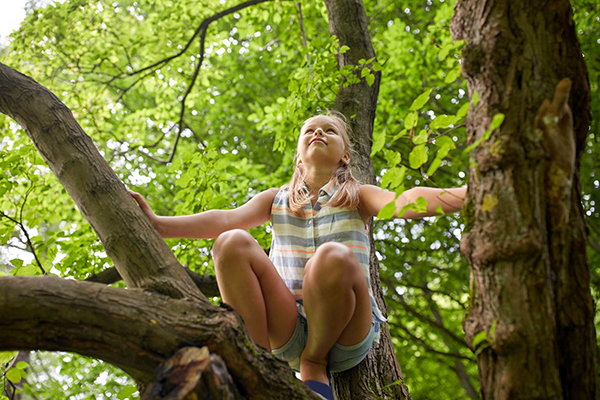 Girl Daydreaming in Tree small