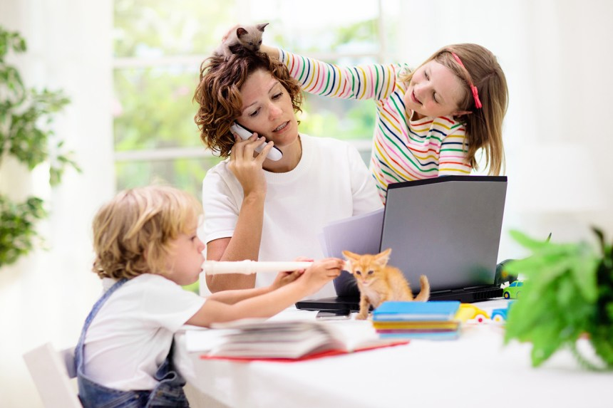 A mom works from home on her laptop at the kitchen table, talking on the phone, while her daughter plays with her hair and her son plays a recorder to a kitten sitting on the table. How can parents help dyslexic children adapt to virtual school?