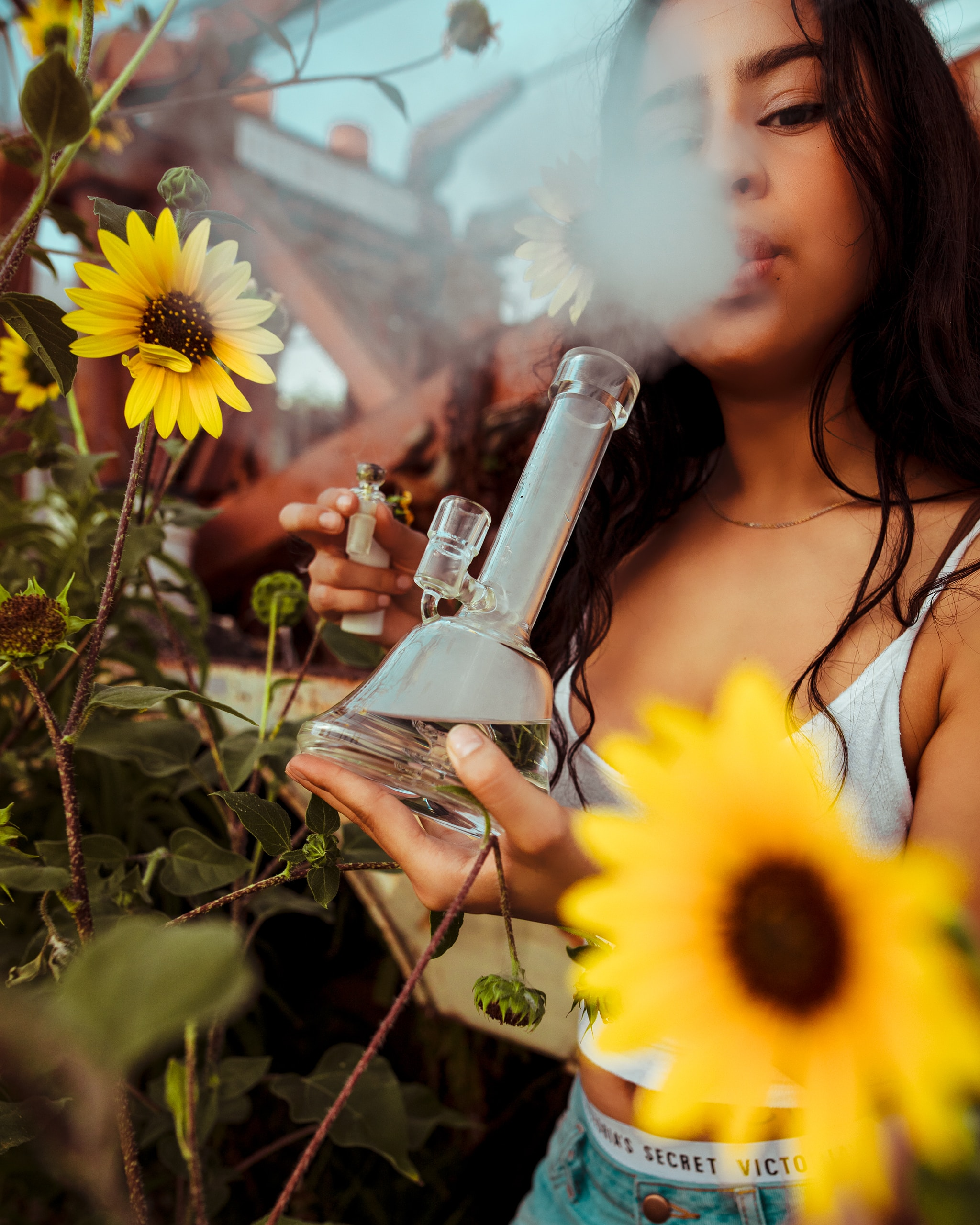 Turn On, Tune In and Stay Home: Virtual 4/20 Celebrations to Keep It Lit on Lockdown