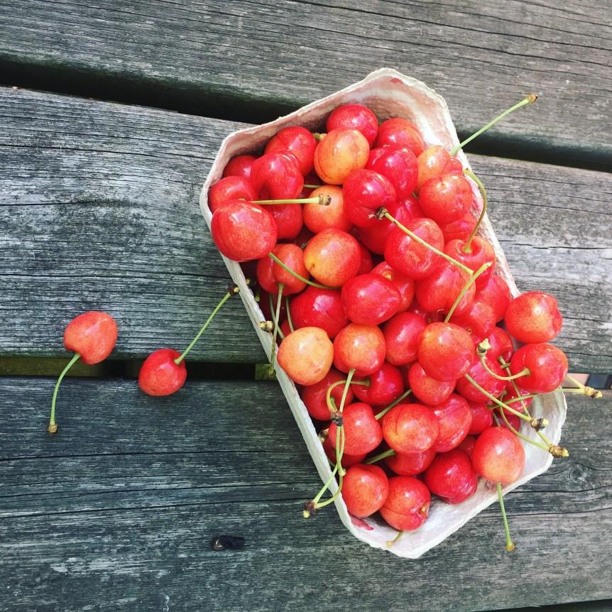 Kirsebær fra haven