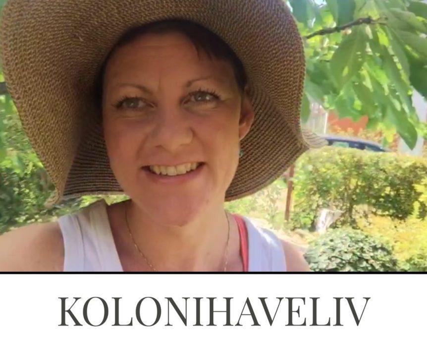 Live video fra kolonihaven - sensommer