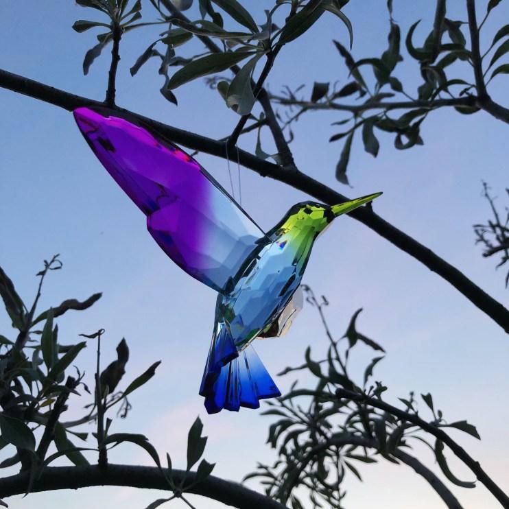 Kolibri af akryl fra Tampa Bay, Florida