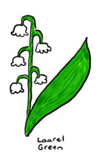 a drawing of some lily of the valley