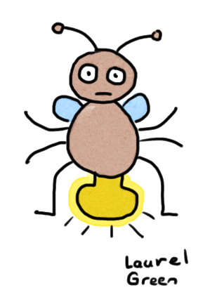 a drawing of a firefly