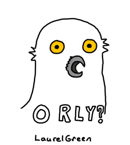 "a drawing of the ""O RLY"" owl"