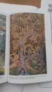 Naturalist Colour Pallet: Masur, Squirrel in a Cherry Tree