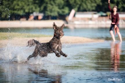 August - Die Wasserqualität im Silbersee wird erneut getestet...