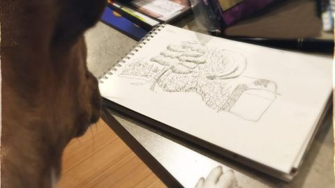Dog Looking At Drawing