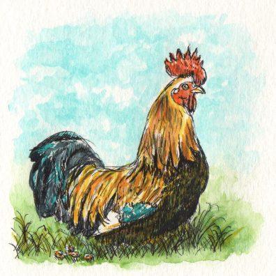 Le Coq Gaulois by Charlie O'Shields